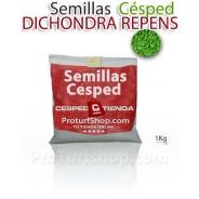 Semillas Dichondra Repens - 1Kg (Promoción Envío Gratis*)