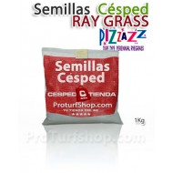 Semillas Césped Ray Grass PIZZAZZ 1Kg